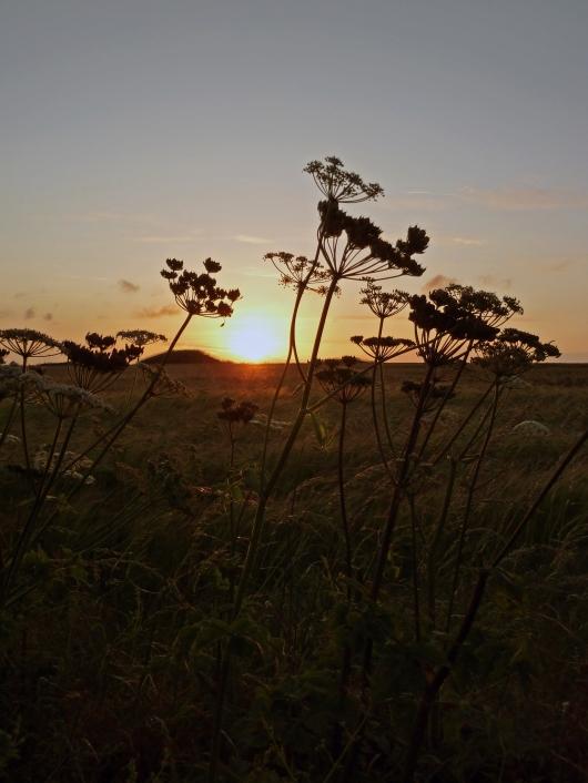 mid-summer-sunset_210611_0036b