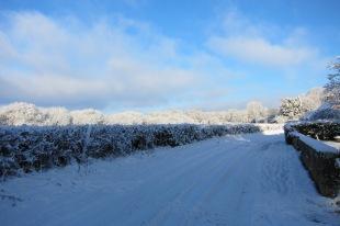 wsg-in-the-snow-18th-dec-2010-169